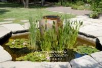 Botanical Garden 02.jpg