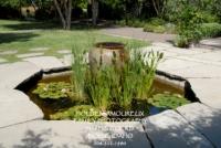 Botanical Garden 03.jpg